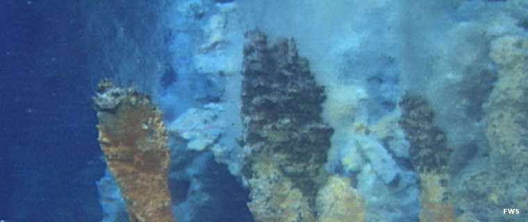 Hydrothermal vents on a volcanic seamount