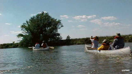 Canoeing on Tinicum Marsh at John Heinz National Wildlife Refuge