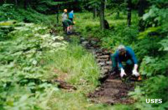 Volunteers working on the Hickory Creek Trail in Hickory Creek Wilderness