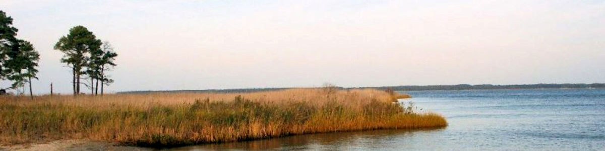 Maryland: A view along the bay at Great Neck National Wildlife Refuge