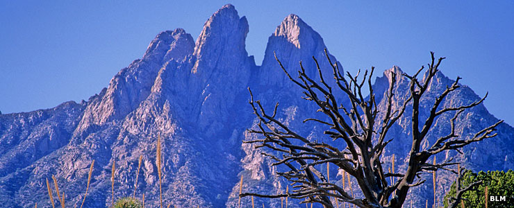 The Organ Mountains in Dona Ana County