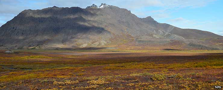 Fall colors at Noatak National Preserve