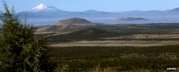 A view across Tule Lake with Mt. Shasta in the distance