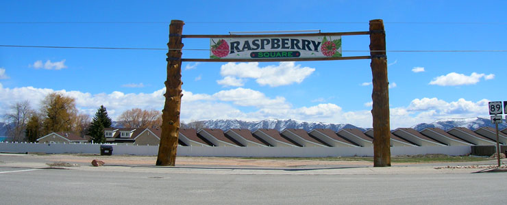 Raspberry Square in Garden City