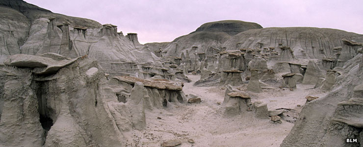 Hoodoos at Bisti-DeNaZin Wilderness
