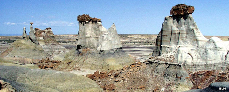 Bisti-DeNaZin Wilderness