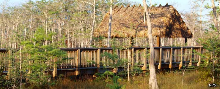 One of the many boardwalks found at Big Cypress National Preserve