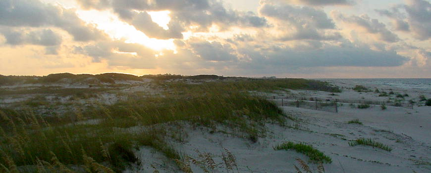A view of sand dunes at Bon Secour National Wildlife Refuge in Alabama