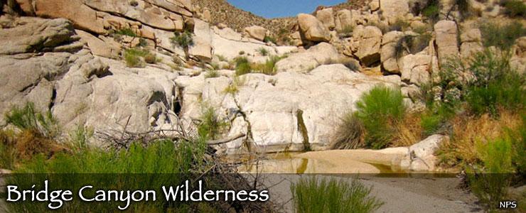 Bridge Canyon Wilderness