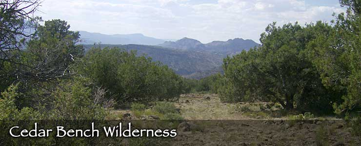 Cedar Bench Wilderness