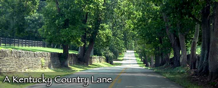 A typical country lane in Kentucky
