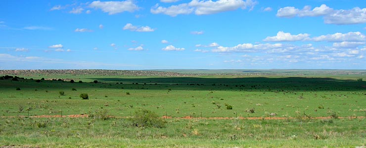 Typical countryside in Guadalupe County