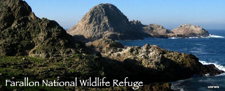 Farallon National Wildlife Refuge
