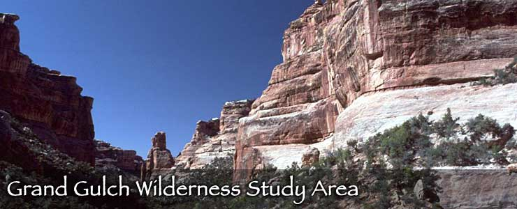 Grand Gulch Wilderness Study Area