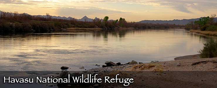 Havasu National Wildlife Refuge