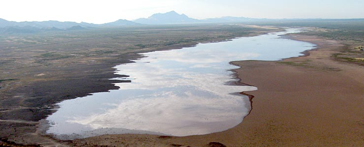 Playas Lake, a dry lake, after a good monson rain