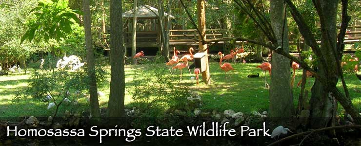 Homosassa Springs State Wildlife Park