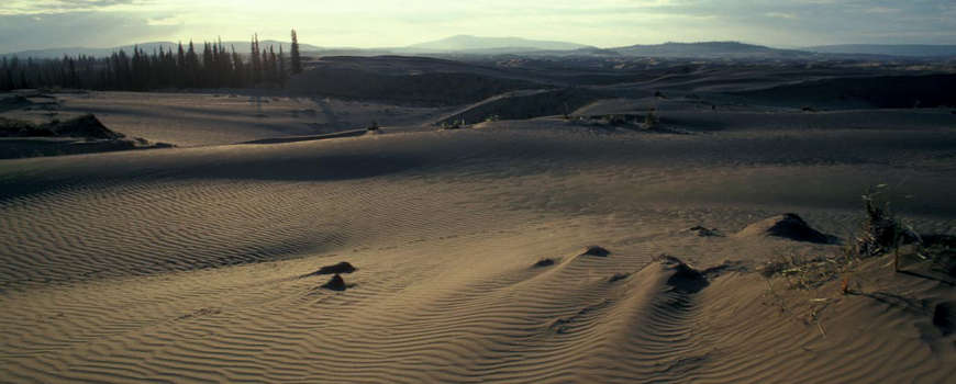 The Sand Dunes at Kobuk Valley National Park
