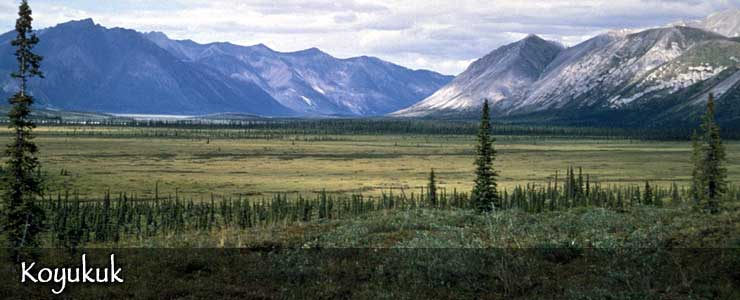 Koyukuk National Wildlife Refuge