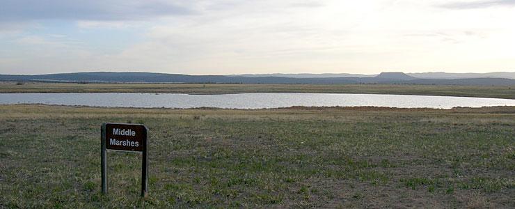 Middle Marshes, Las Vegas National Wildlife Refuge