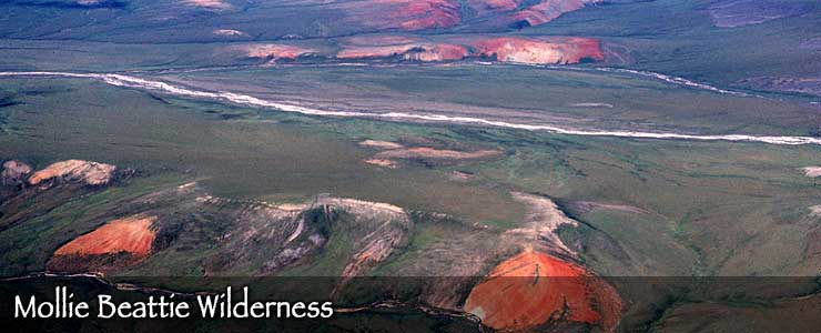 Red Hills on the Arctic Plain, Mollie Beattie Wilderness