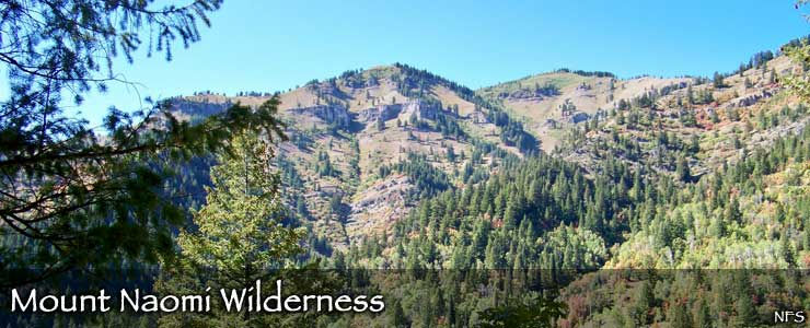 Mount Naomi Wilderness