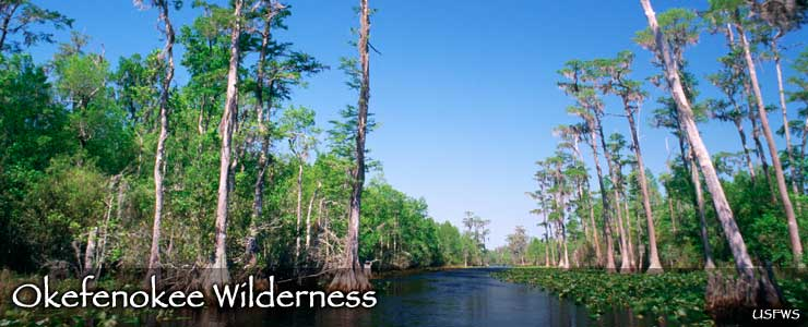 Okefenokee Wilderness