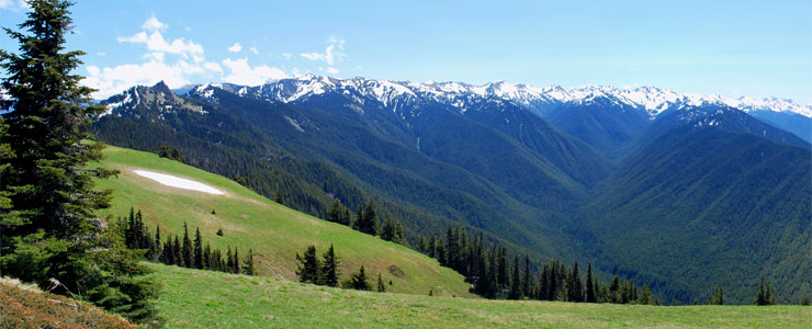 Hurricane Ridge view, Olympic National Park
