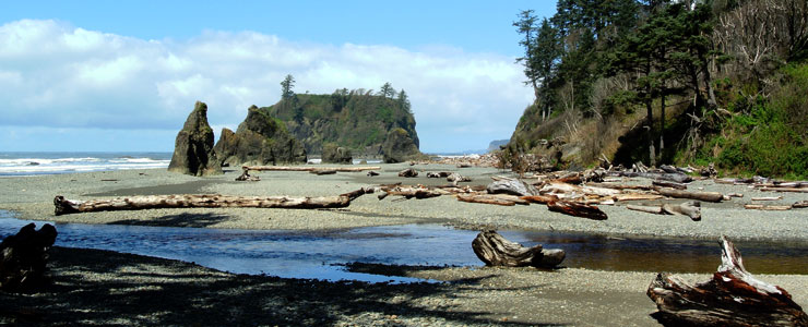 Ruby Beach in the coastal area of Olympic National Park