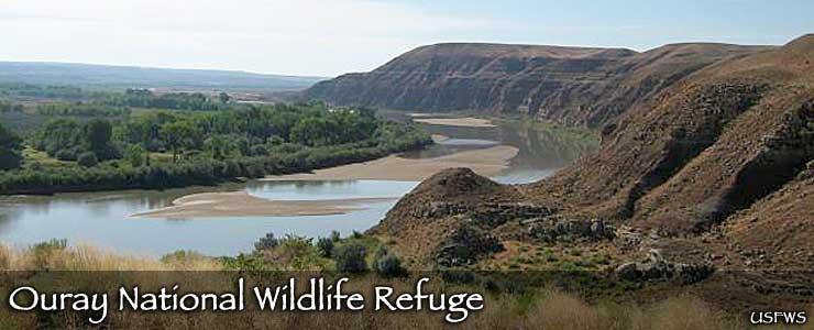 Ouray National Wildlife Refuge