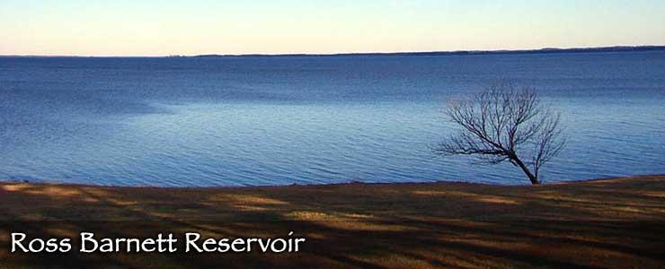 Ross Barnett Reservoir from the Natchez Trace Parkway