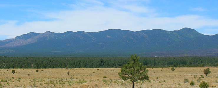 Manzano Mountains from the Salt Missions Trail