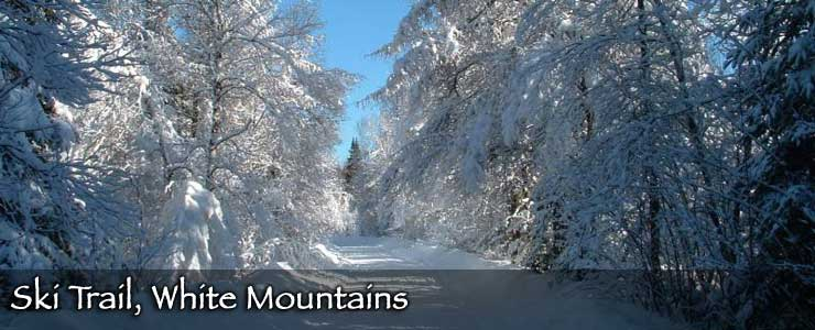 A ski trail in the White Mountains