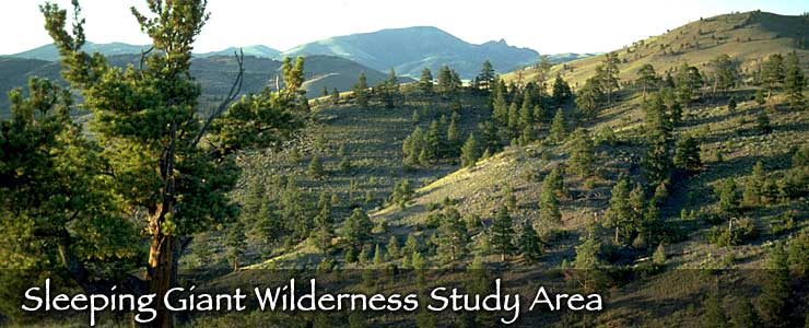 Sleeping Giant Wilderness Study Area