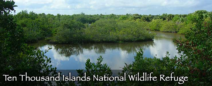 Ten Thousand Islands National Wildlife Refuge