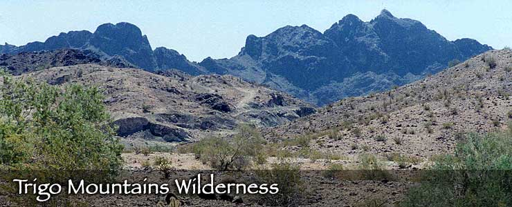 Trigo Mountains Wilderness