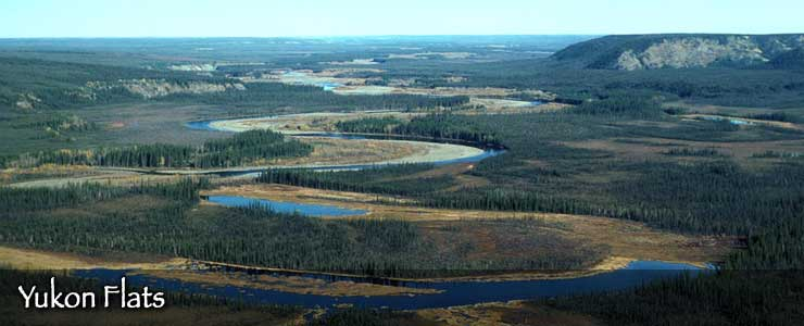Yukon River, Yukon Flats National Wildlife Refuge