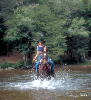 A woman on horseback crossing a tream in Sumter National Forest