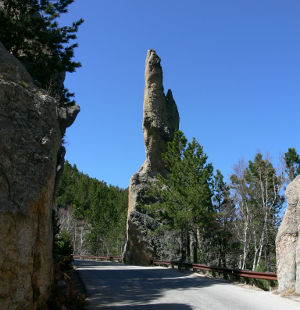 Along the Needles Highway section of the Peter Norbeck Scenic Byway
