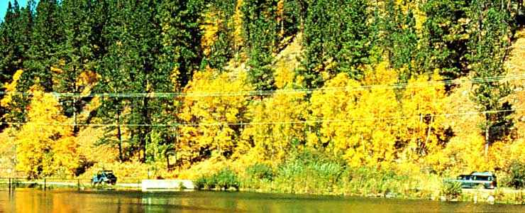 Along the Spearfish Canyon Scenic Byway in the fall