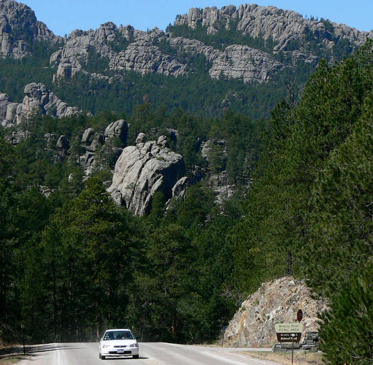 Typical view along the Peter Norbeck Scenic Byway