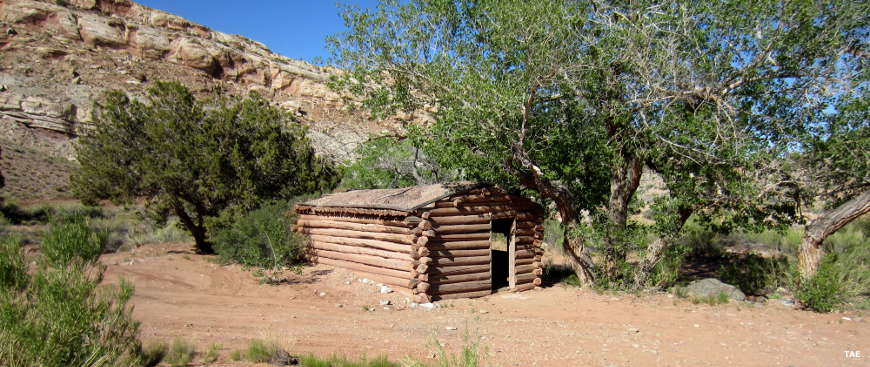 Next to Crescent Creek: A log cabin