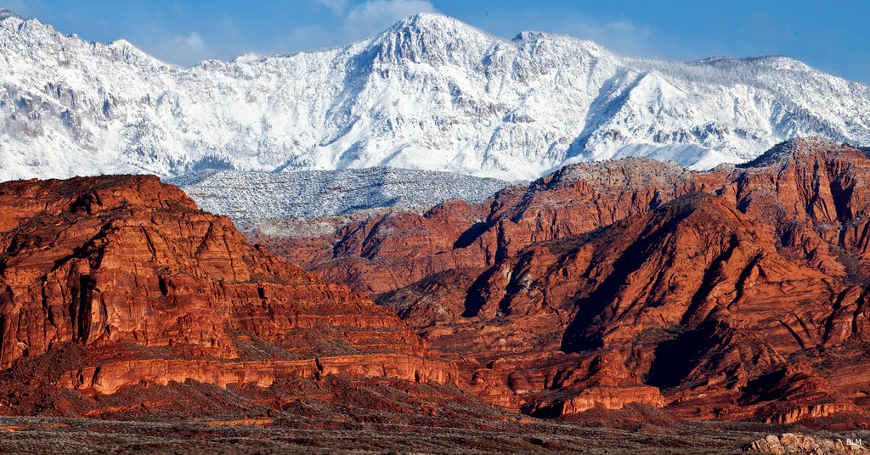 Red Cliffs National Conservation Area | The Sights and