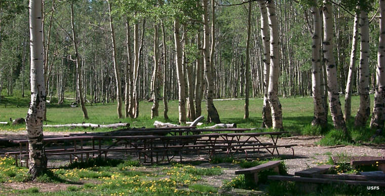 The group picnic area at Deer Haven Campground