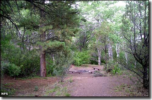 Fishlake national forest utah national forests for Fish lake utah camping