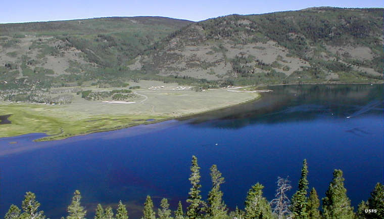 Fishlake national forest the sights and sites of america for Fish lake utah