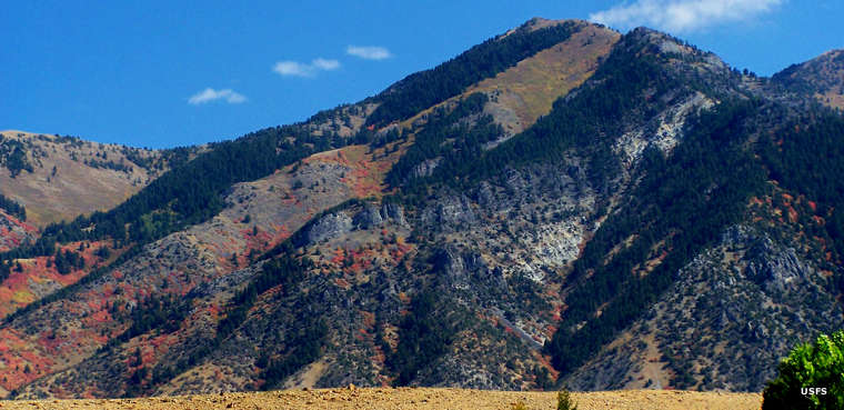 Wellsville Canyon area, Uinta-Wasatch-Cache National Forest
