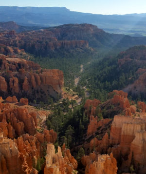 A view of the wilderness area in Bryce Canyon National Park