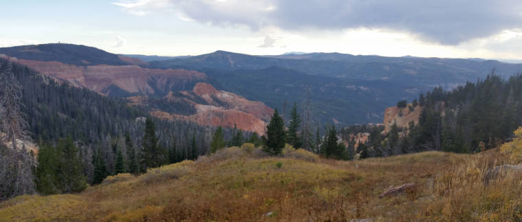 A view right off the road along the Cedar Breaks Scenic Byway
