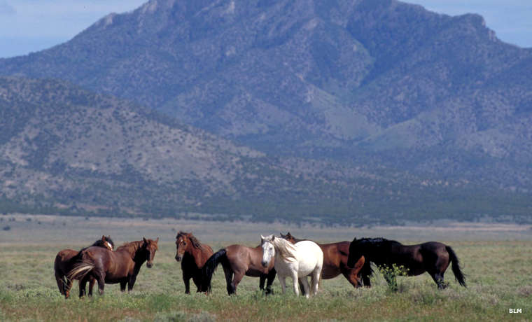 Tire Places Open Today >> Pony Express Trail Backcountry Byway | The Sights and ...